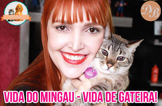 Vida do Mingau – TAG: Vida de Gateira – Em vídeo!